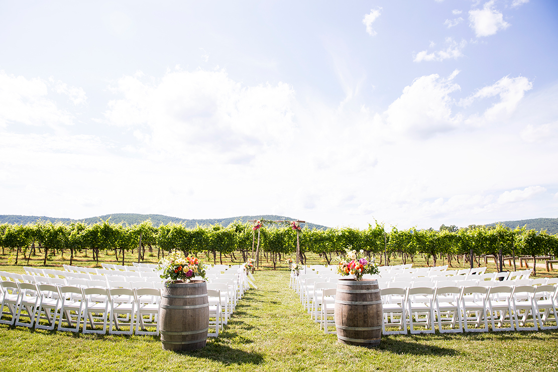 Best Vineyard Wedding Venues in Virginia - Image Property of www.j-dphoto.com