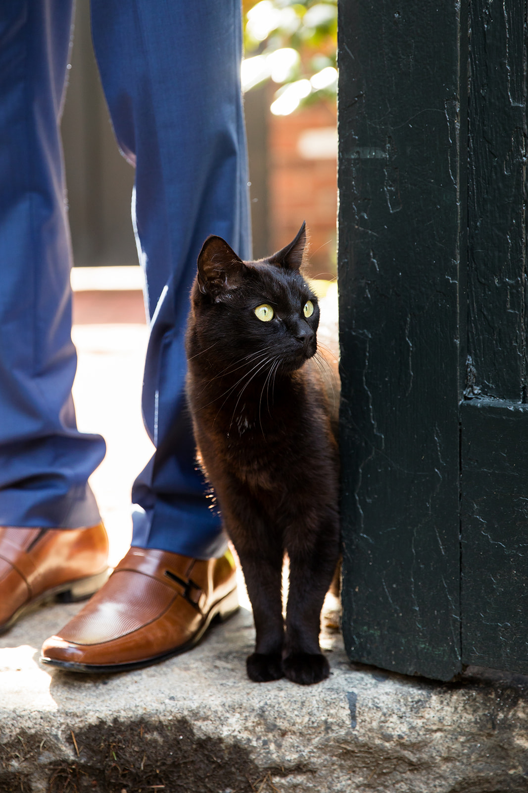 Poe Museum Elopement with a Black Cat - Image Property of www.j-dphoto.com