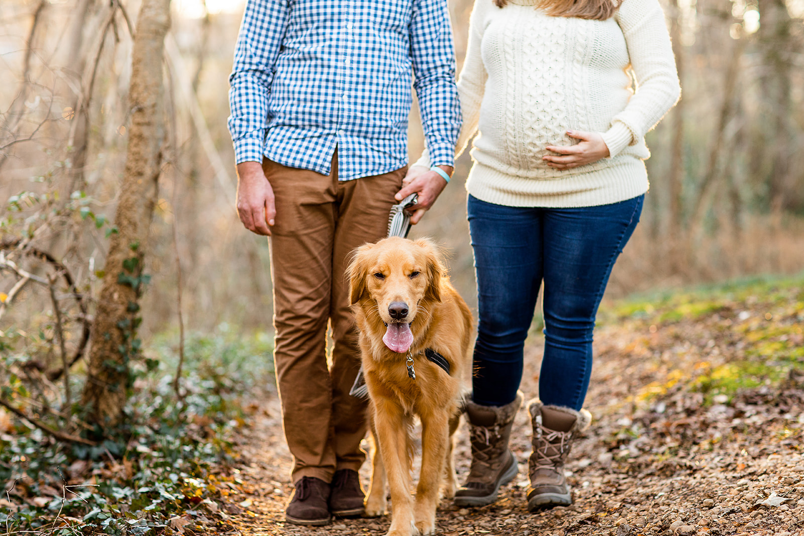 Casi  Christians Golden Retriever Filled Maternity Shoot - Image Property of www.j-dphoto.com
