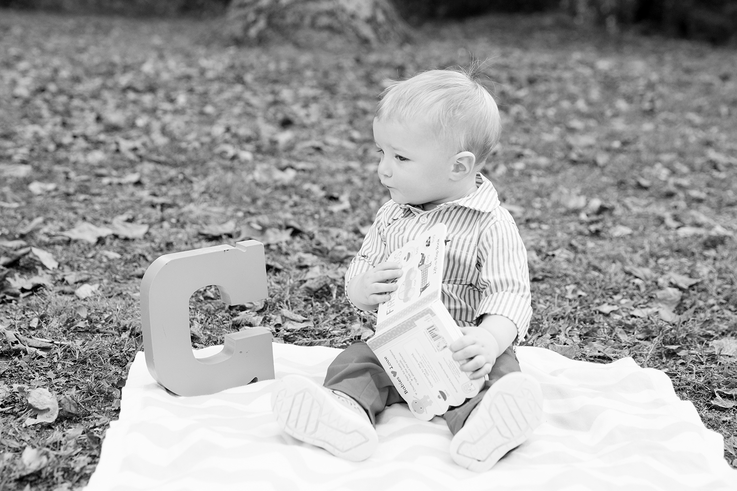 Christophers One Year Old Photos - Image Property of www.j-dphoto.com