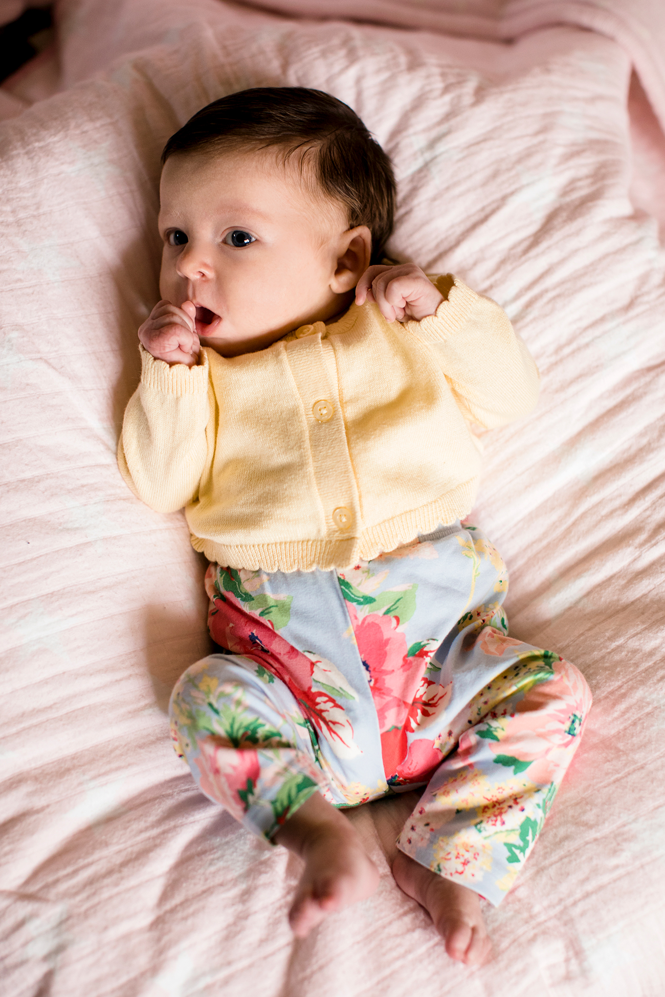 Baby girl ellies newborn shoot image property of www j dphoto com