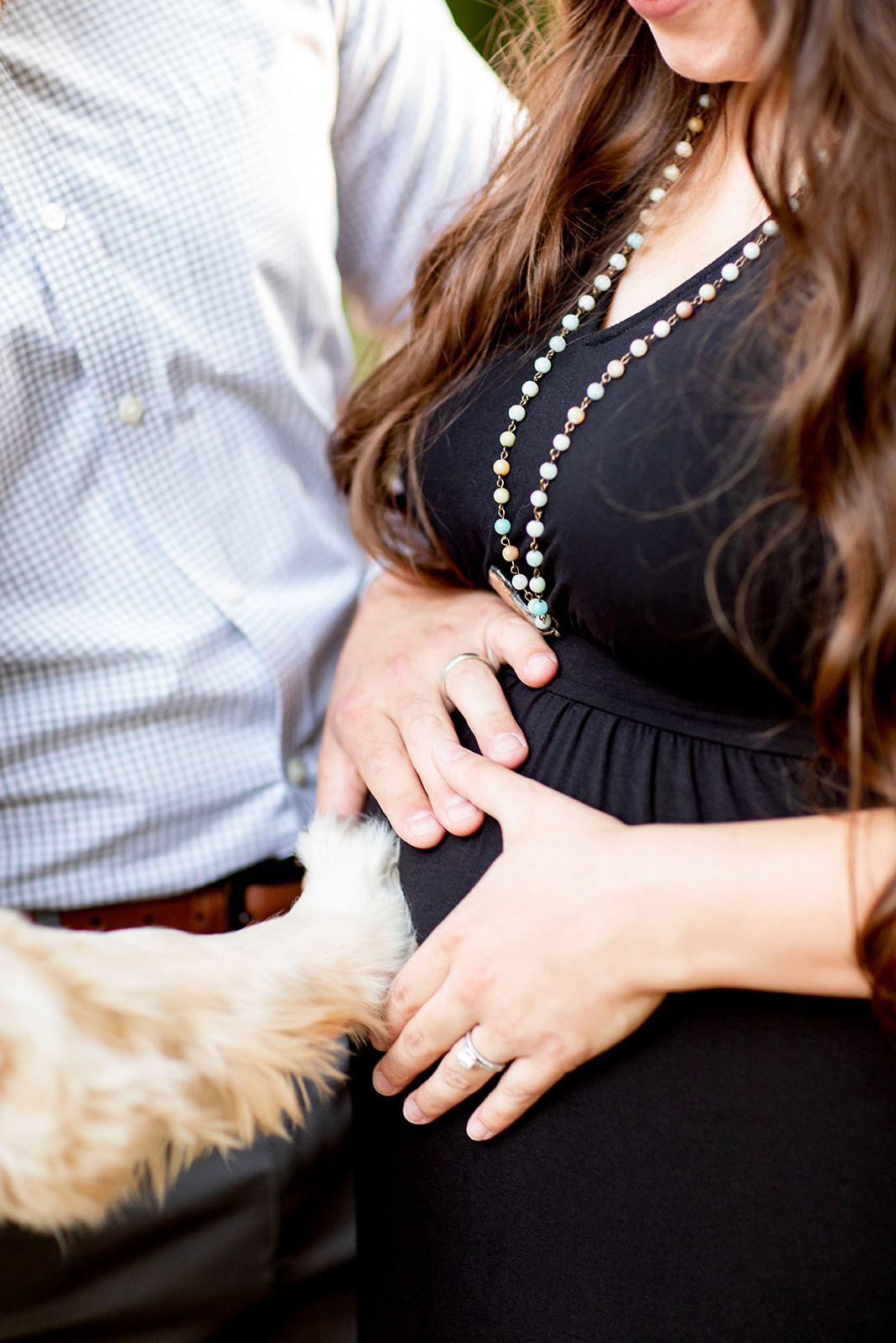 Taylor  Daniels Mini Maternity Shoot with a Golden Retriever - Image Property of www.j-dphoto.com